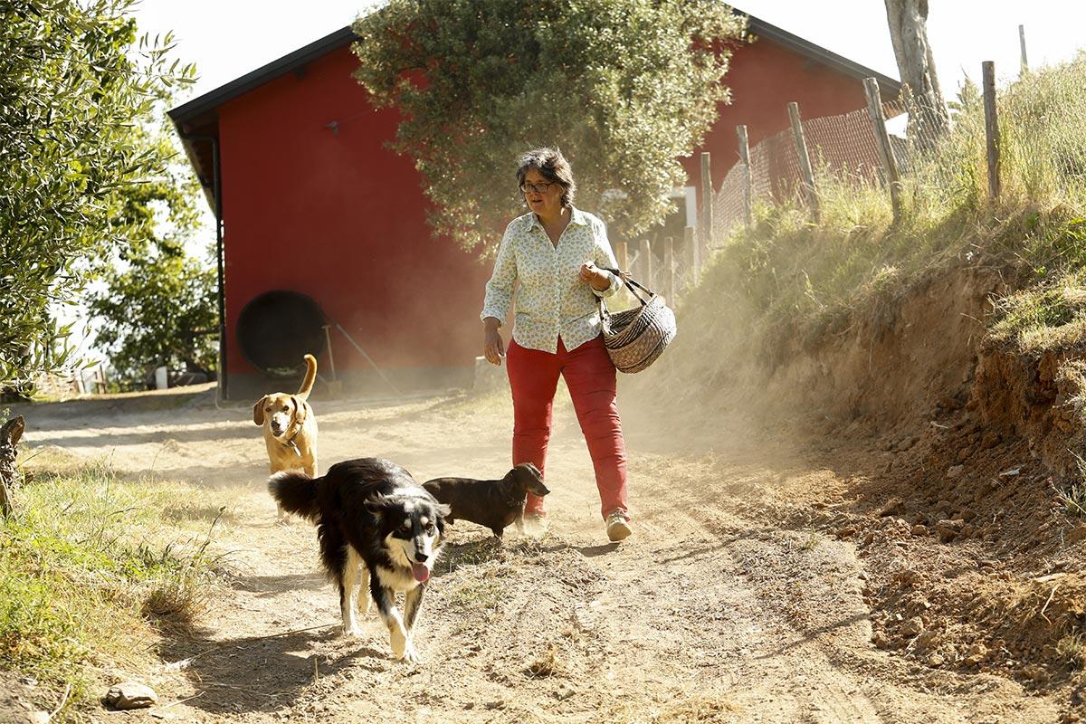 camera e colazione - Fiona con i cani