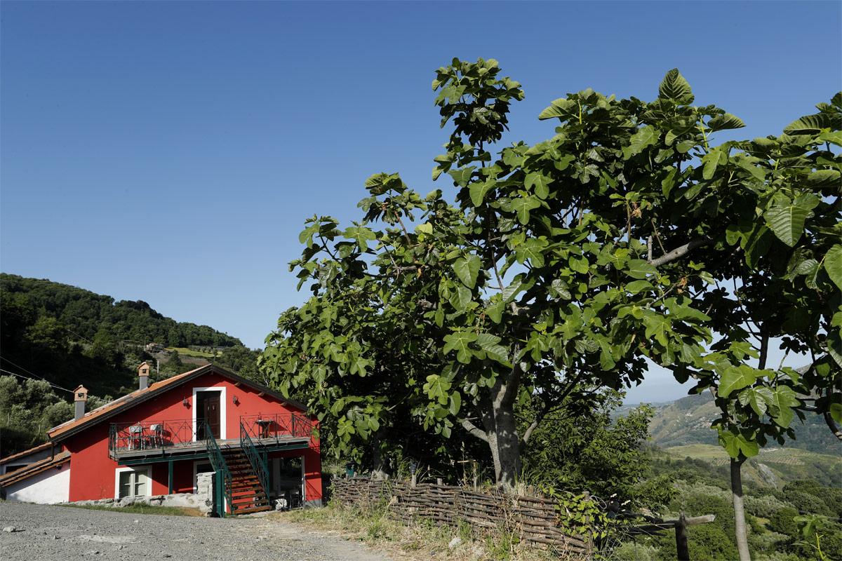 camera e colazione - esterno - Martirano Lombardo Calabria
